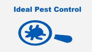 Greensboro Pest Control (336) 996-4952 - Ideal Pest Control
